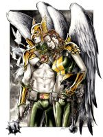 Hawkman and Hawkgirl by DanielGovar
