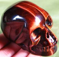Red African Tigers Eye 001b by SKULLKRAFT