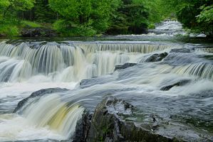 Bond Falls I by M-Lewis