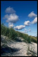 Grass, Sand and Clouds by GoDsGiMp