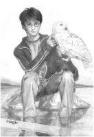 Harry Potter with owl by llvllagic