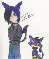 Zane the Purrloin by AlyssaThePikachu