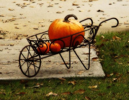 Pumpkin Barrow by rodwilliams