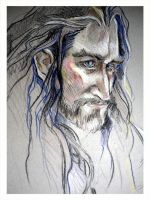 Thorin by lilbit075
