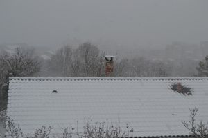 Roof snow by cendredelune