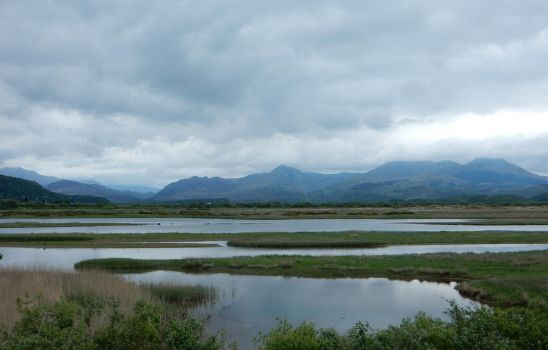 View of Eryri from Glaslyn Estuary by rlkitterman