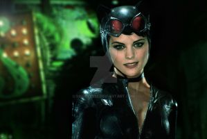 Catwoman - Arkham Knight: Heroes! by Spidey9292