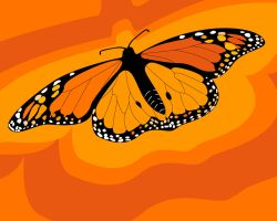 butterfly orange by 000nevermore000