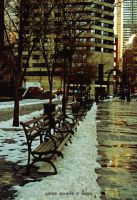 Benches on 52nd by blueink-ac