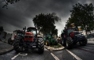 Farmer's demonstration 2 by bubus666