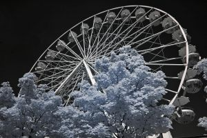 Ferris Wheel by vw1956