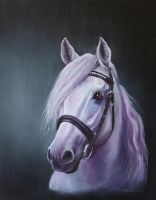 Palhaco in oils by corienb