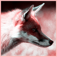 Fox Avatar by The1MillionthVisitor