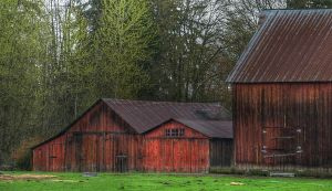 Barn Series 2 by Stolte33
