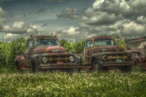 Two Will Get You One by ImagesByAndrew