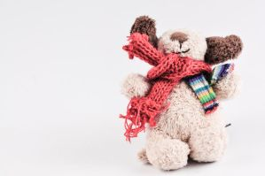 TEDDY BEAR by AMITSHITA