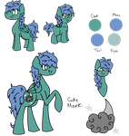 Rain Loom Reference Sheet by TaylortheSnailor