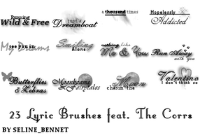 Icon Text Brushes by seline-bennet