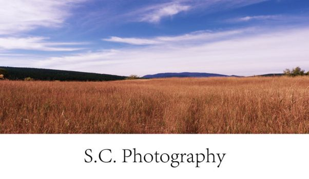 S.C. Photography- Field of dreams by Summer--lynn