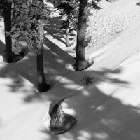 Day 566 [1-6-15]: Snow Puncture by BuuckPhotography