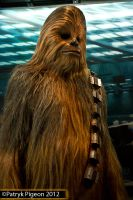 Star Wars Identities - Chewbacca by MrSyn