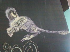 Velociraptor chalk drawing by ChozoBoy