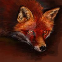 Doodle 092 - Red Fox by giovannag