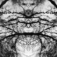 of terrible love and spiders by PsycheAnamnesis