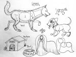 Draw Dogs revised by Diana-Huang