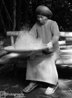 Winnowing Rice by yuanyuanyuan