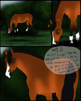 . Bewitched Moon Stable - Todka - Mini Comic . by ChampieB