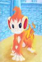 Chimchar by meleemonkey