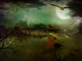 Chouette matte painting by jackodeco