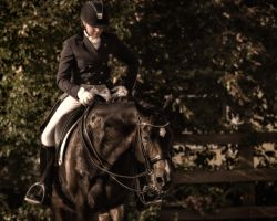 Dressage -Grace by AndersStangl