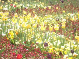Floriade4 by twilighted-angel