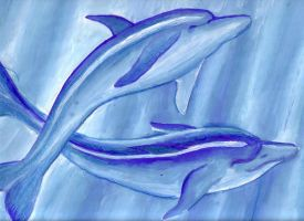 Dolphins by DeCORinASON