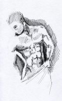 muscle study by BettyPimm