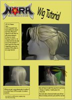 Nora Wig TuTorial pg1 by DarckRaven