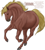 King of the Cascade Brumbies by damustang