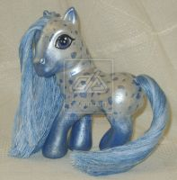Blue Appaloosa by customlpvalley