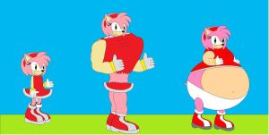 sizes of amy rose by amyrosefan17