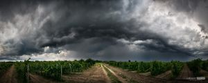 Refreshing summer storm by NorbertKocsis