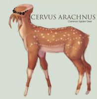 Cervus Arachnus by caughtinthehurricane