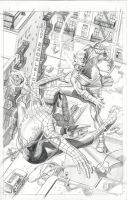 Spider-Man vs Green Goblin by mikemayhew