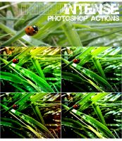 Intense PS Actions Set x4 by ArchitekOGP