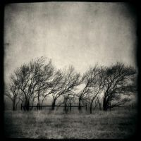 Forbidden by intao