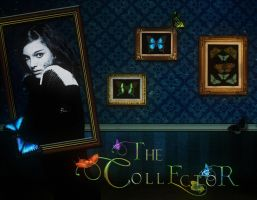 The Collector by ShirleyWoodruff
