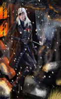 Snow and Fire by Kharneth