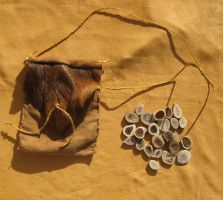 Elk antler rune set by lupagreenwolf