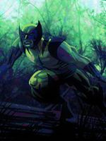 Wolverine by shanepeters